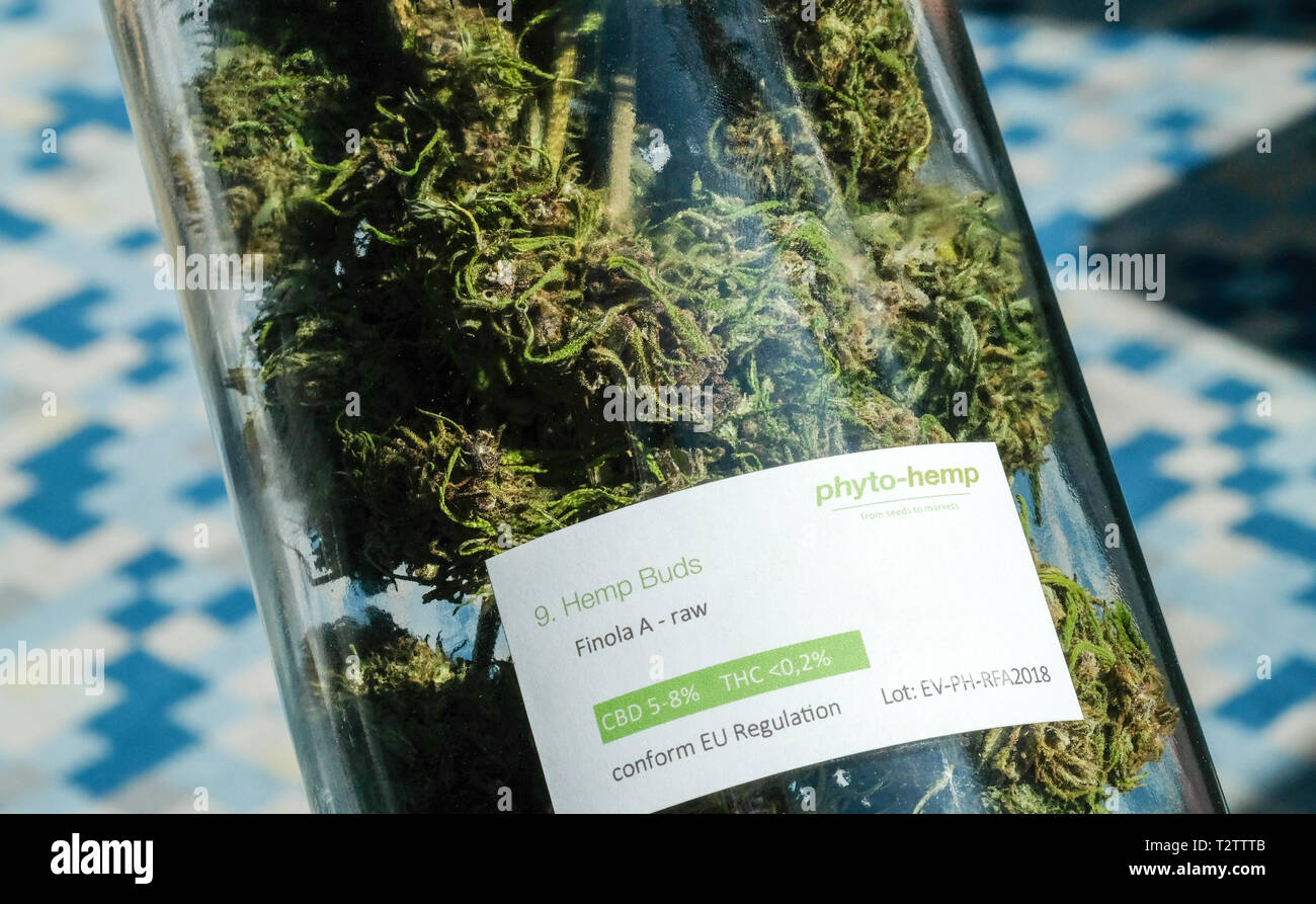 Berlin, Germany. 02nd Apr, 2019. Dried hemp buds can be seen in a glass jar with the inscription 'Hemp Buds raw, conform EU Regulation' at the International Cannabis Business Conference ICBC at an exhibitor's stand. Credit: Jens Kalaene/dpa-Zentralbild/ZB/dpa/Alamy Live News - Stock Image