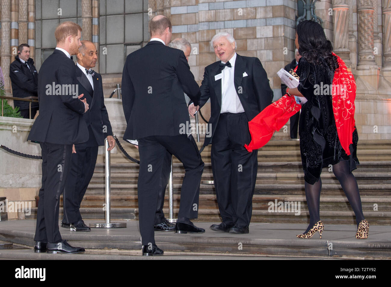 London, United Kingdom. 4 April 2019. Prince William, Prince Harry & Prince Charles are greeted by Sir David Attenborough at the global premiere of 'Our Planet' presented by Netflix. Credit: Peter Manning/Alamy Live News Stock Photo