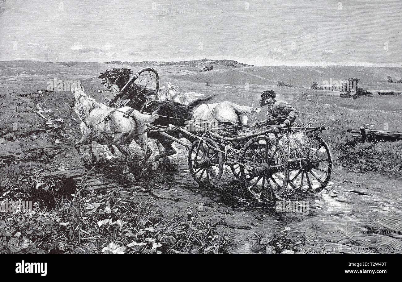 The coachman on a Polish cart drives his horses to the haste, Der Kutscher auf einem polnischen Fuhrwerk treibt seine Pferde zur Eile an Stock Photo