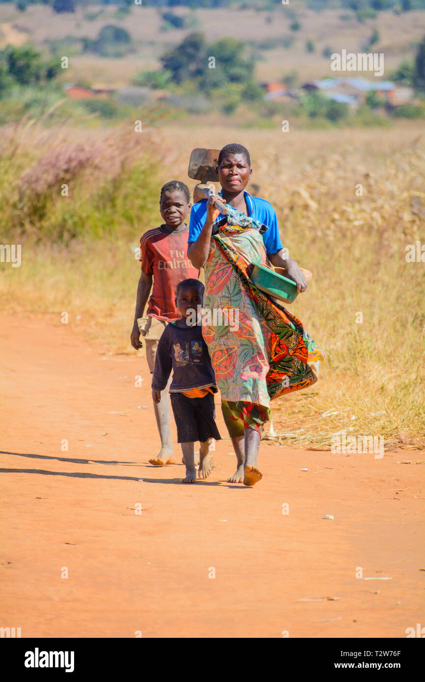 Malawian woman and two children walking home from farm work carrying hoe on dirt road through fields - Stock Image