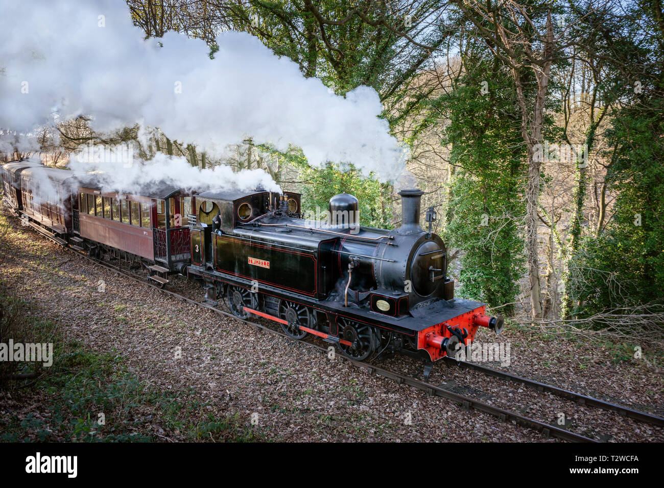 Steam Train with engine belching smoke and steam.  0-6-0T Locomotive Twizell pulling passenger carriages on Tanfield Railway County Durham - Stock Image