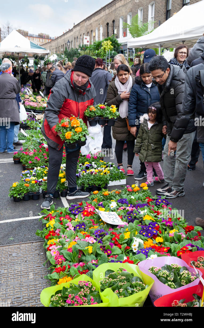 Columbia Road flower market on a Sunday morning in March, Bethnal Green, Tower Hamlets, Greater London, London, England, United Kingdom, Europe - Stock Image