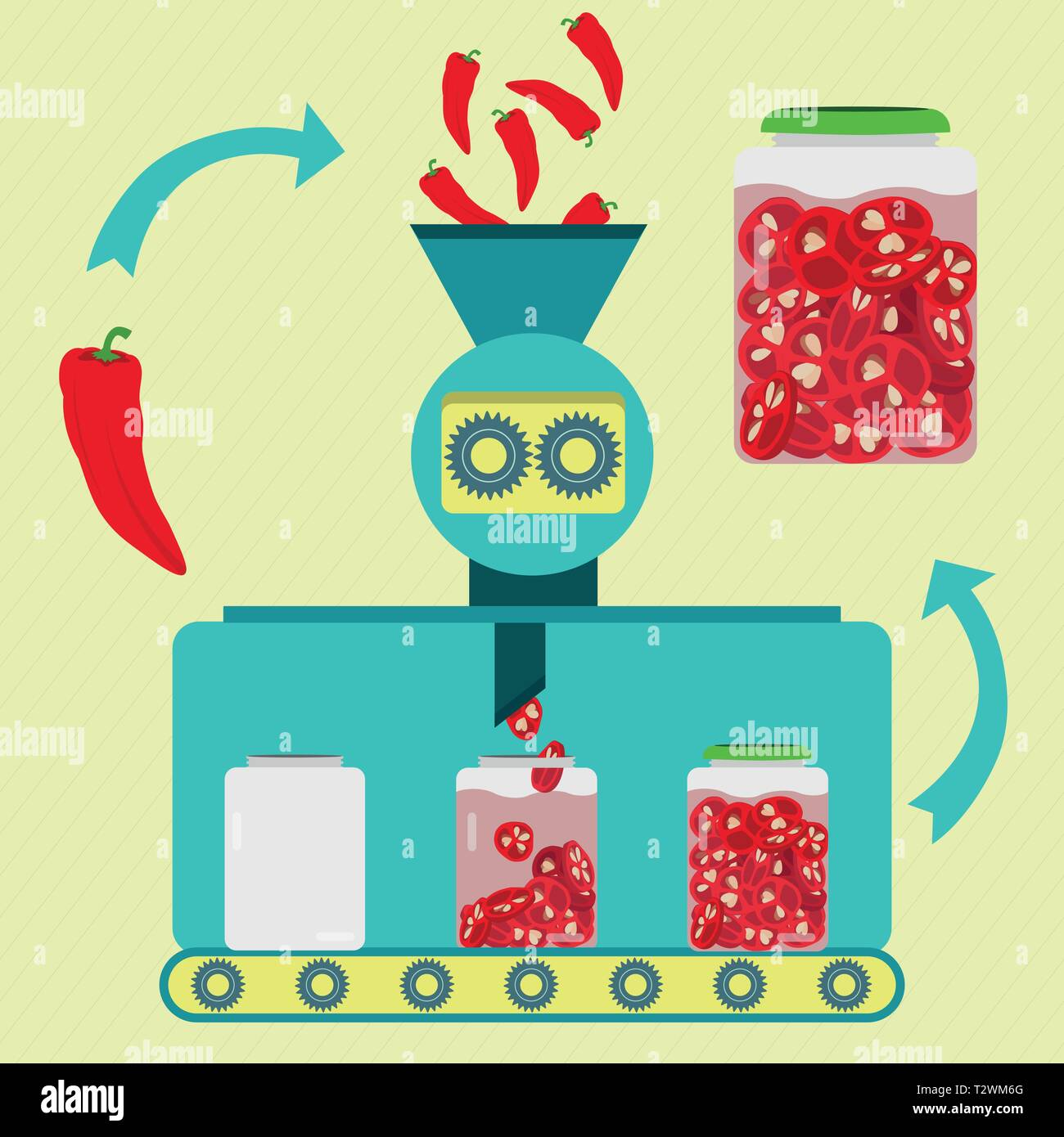 Pickles series production. Fresh red chilli peppers being processed and sliced. Bottled pickled sliced chilli peppers. - Stock Vector