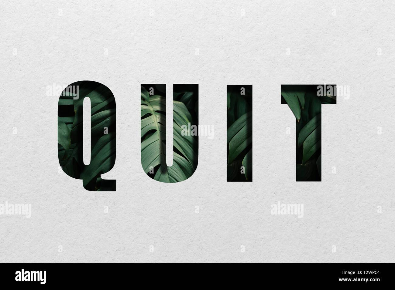 leaf letter word quit - Stock Image