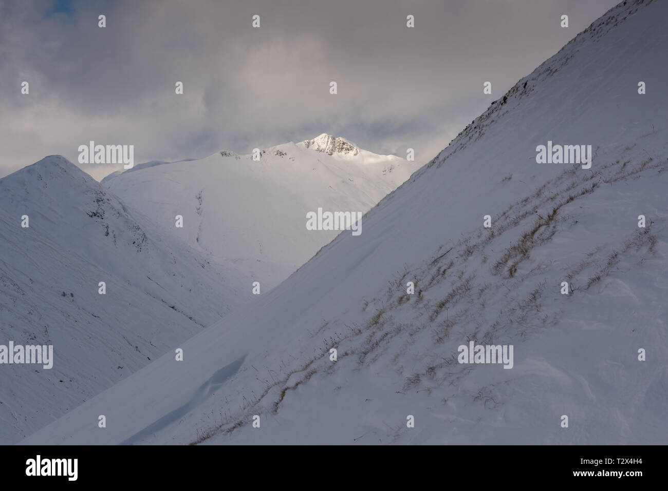 Winter in the Scottish mountains: The Corbett Am Bathach and the Munro Ciste Dhubh from the slopes of A Chraileag, Scotland - Stock Image