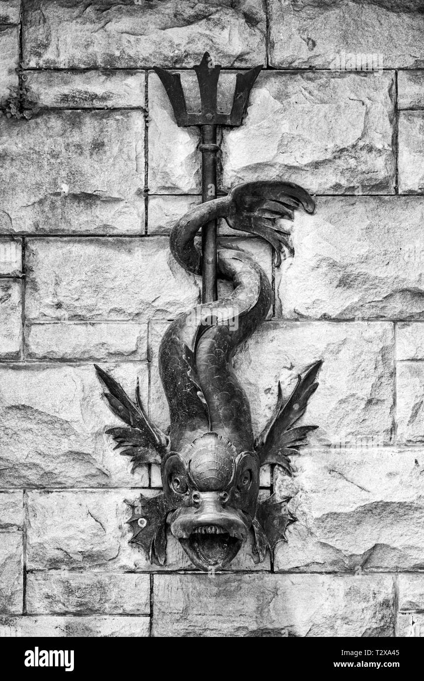 A gargoyle-like fish functions as a drainage pipe, surrounded by stonework, at the Biltmore Estate in Asheville, NC, USA - Stock Image