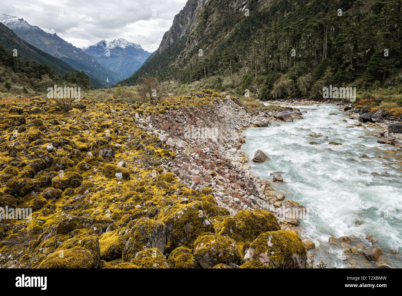 The Tarina valley and its river, Gasa District, Snowman Trek, Bhutan - Stock Image