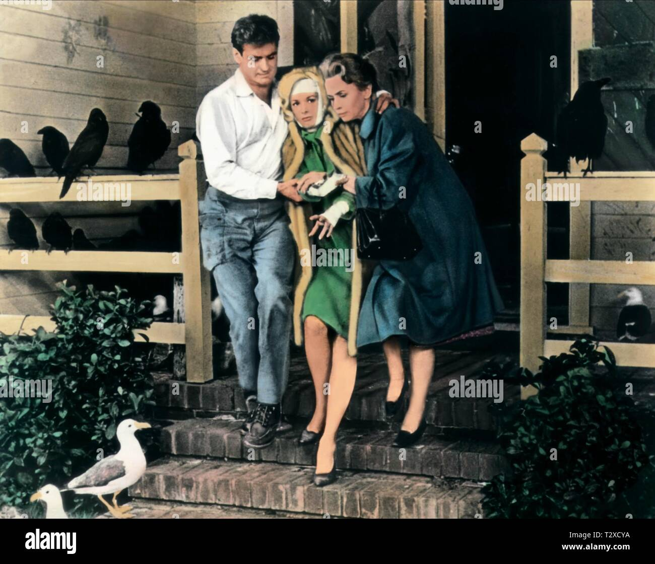 ROD TAYLOR, TIPPI HEDREN, JESSICA TANDY, THE BIRDS, 1963 - Stock Image