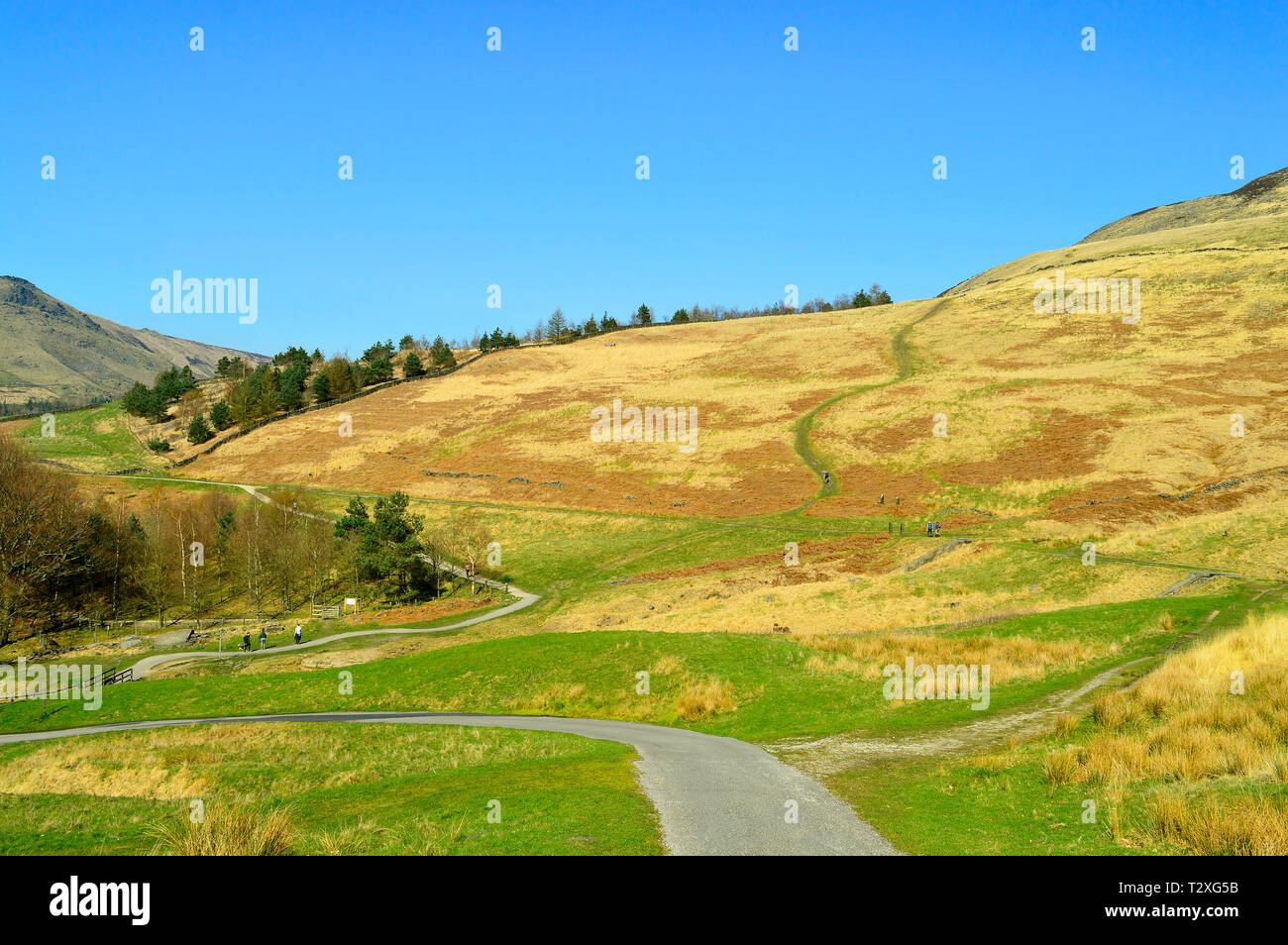 Chew valley footpaths above Dovestone reservoir in the Peak District National Park - Stock Image