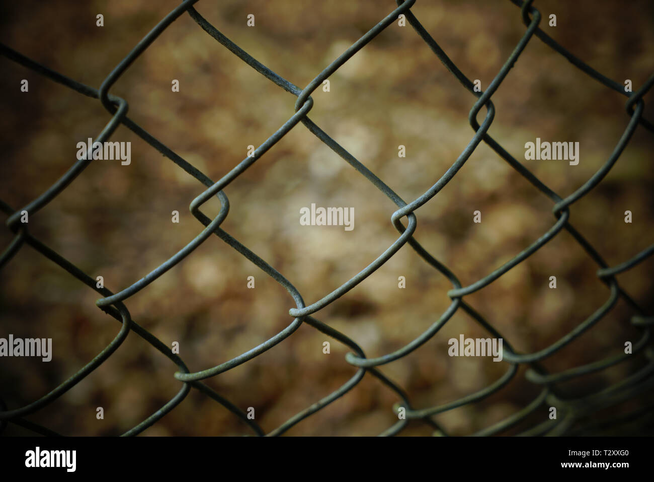 Close up of a chain link fence with blurred background. - Stock Image