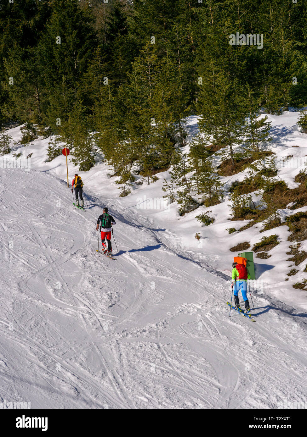 skilift and piste, skiing area Hochimst, Imst, Tyrol, Austria, Europe - Stock Image