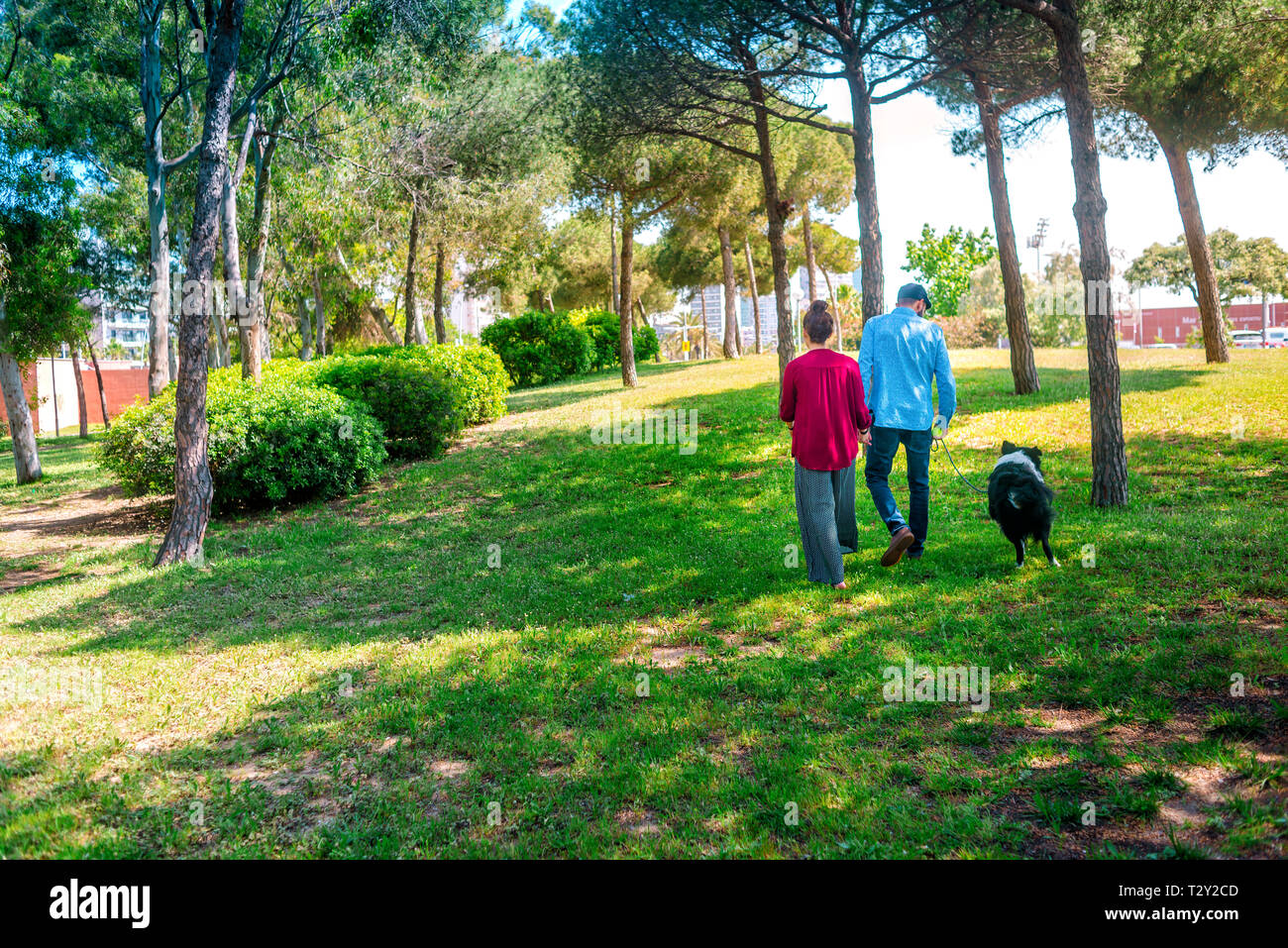 Rear view of couple and dog walking at park - Stock Image