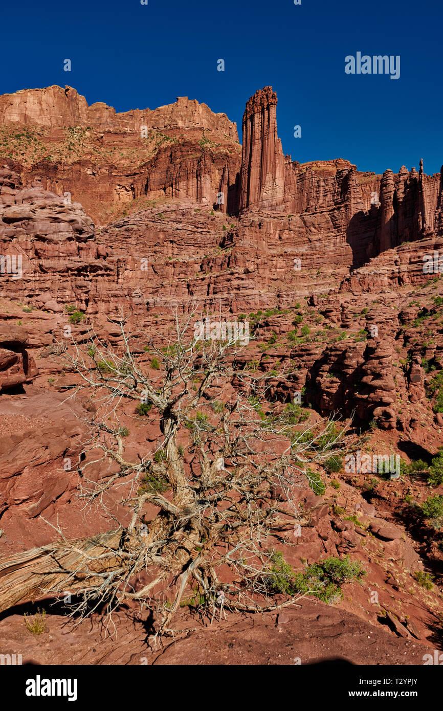 Fisher Towers, Moab, Utah, USA, North America - Stock Image