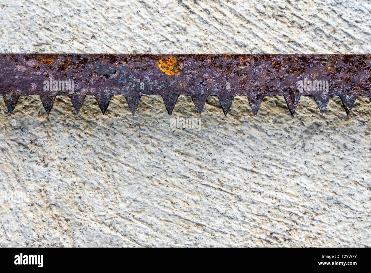 The sharpness of saw blade is old and rusty On the concrete floor - Stock Image