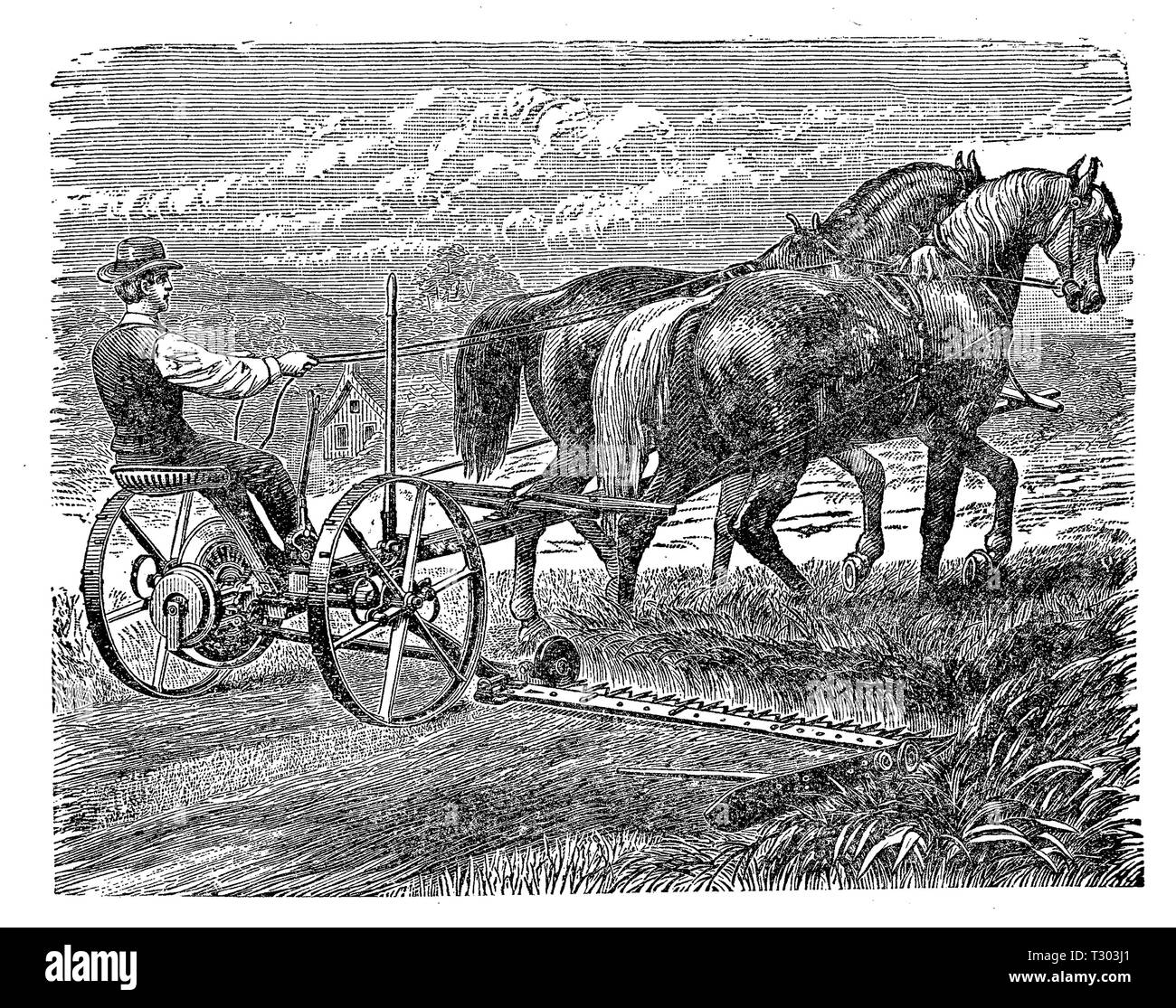 Farming machine XIX century: grass mower trained by horses with a reaping attachment for cutting grass and grain. - Stock Image