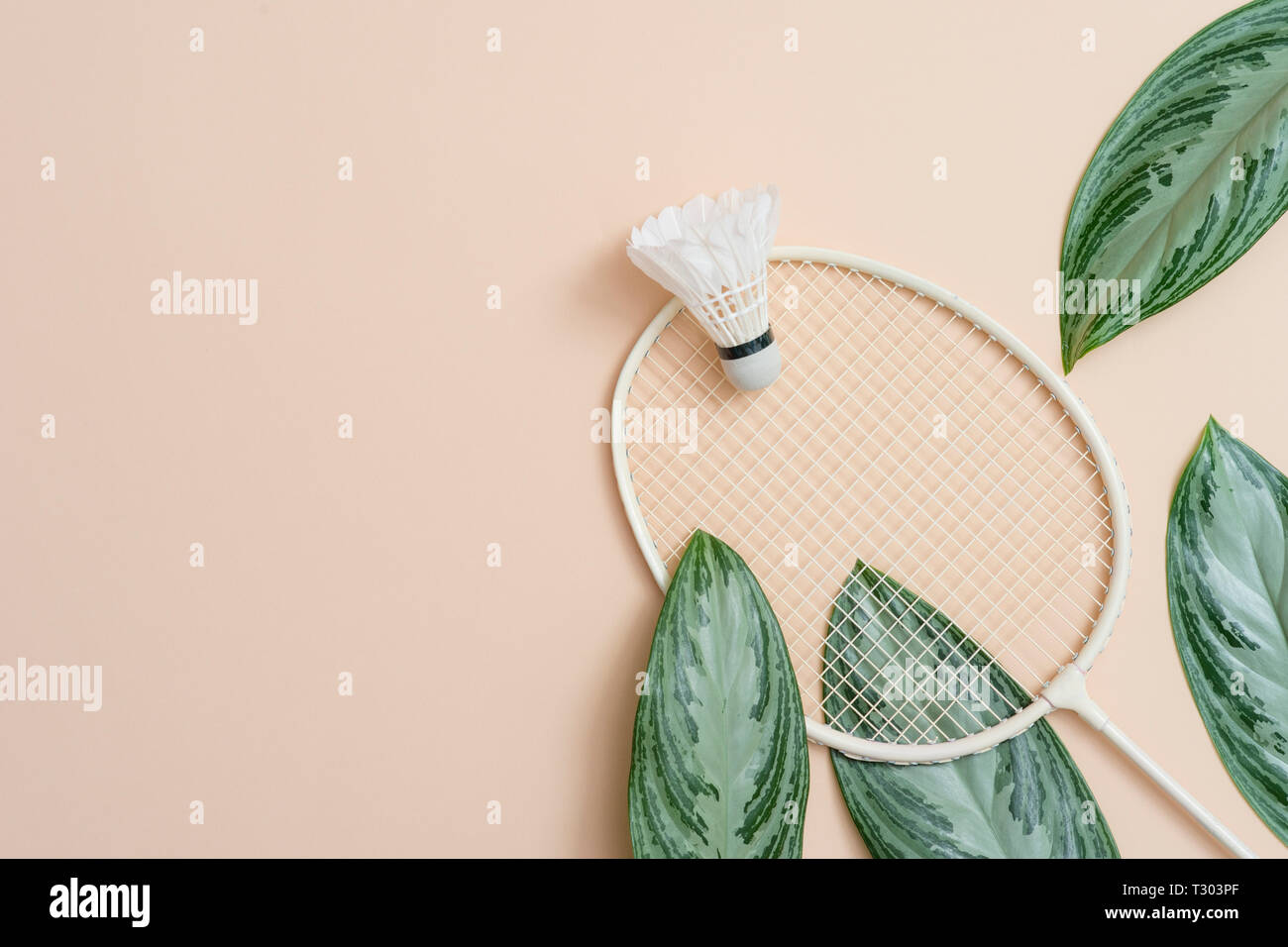 Badminton Beach Set And Tropical Leaves Sports Header On A Cream Background With Copy Space Summer Vacation Flat Lay Stock Photo Alamy Are you looking for tropical leaves design images templates psd or png vectors files? alamy