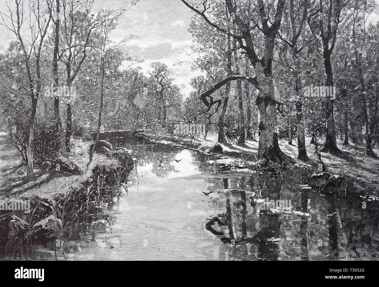 Digital improved reproduction, Forest brook, a brook flows by the deciduous forest, after a painting of Peter Paul Müller, scenery painting, Waldbach, ein Bach fließt durch den Laubwald, nach einem Gemälde von Peter Paul Müller, Landschaftsgemälde, from an original print from the 19th century Stock Photo