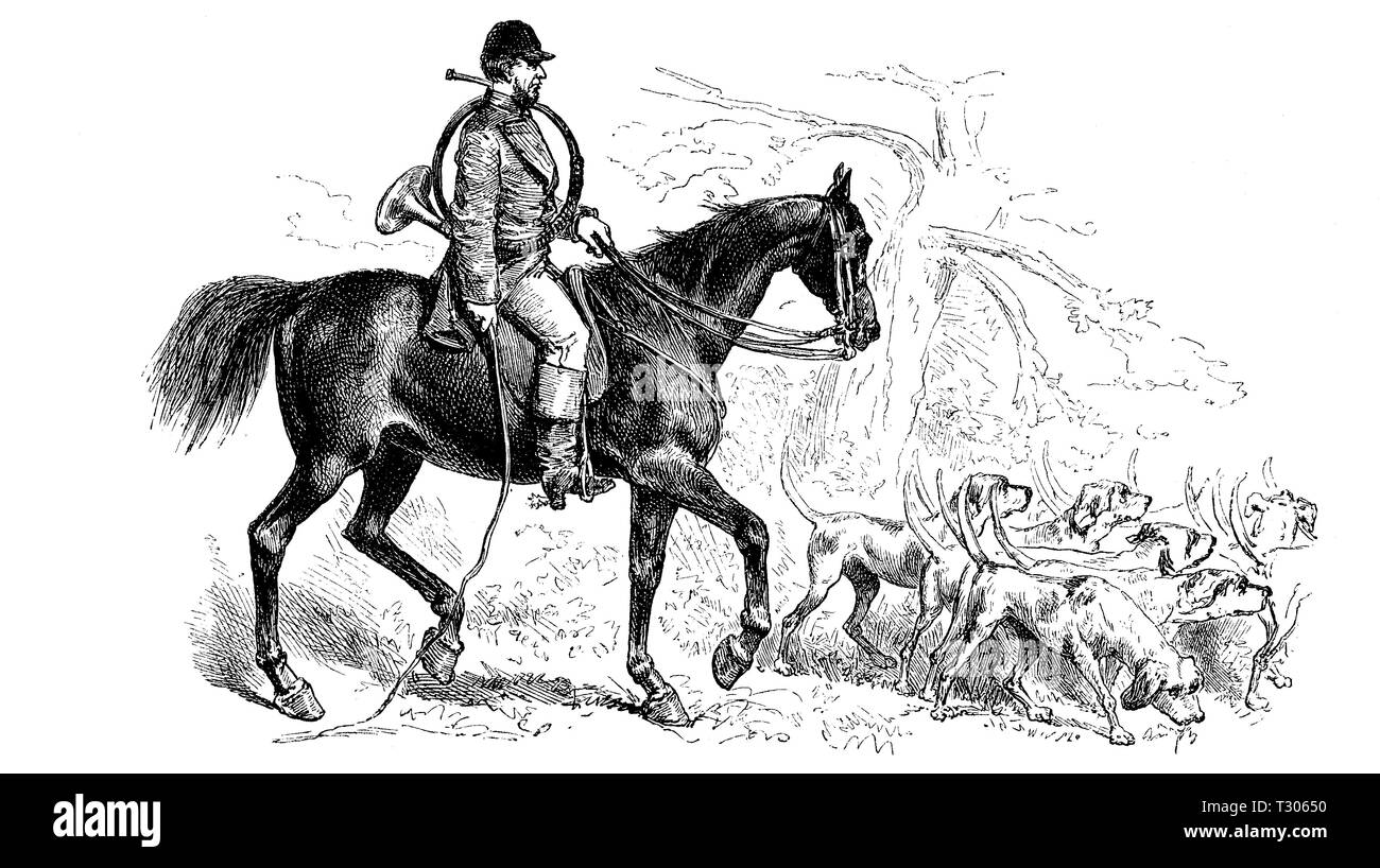 Digital improved reproduction, Oberpiqueur, responsible hunting leaders of a Parforcejagd, and dog pack, verantwortliche Jagdleiter einer Parforcejagd, und Hundemeute, from an original print from the 19th century - Stock Image