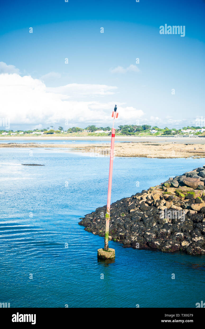 Cormoran on a pole at sea drying in the sun in Summertime on the isle of Noirmouiter - Stock Image