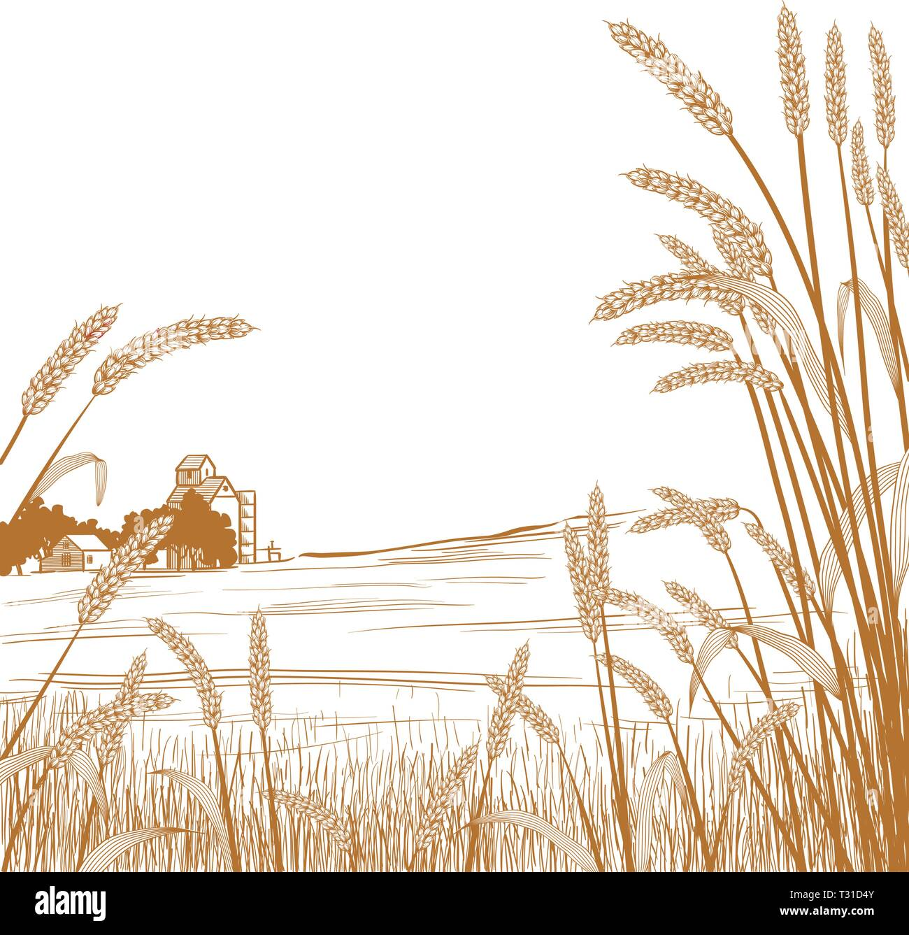 View of across a wheat field at a farm and silo with wheat grass strands framing the scene in the foreground - Stock Vector