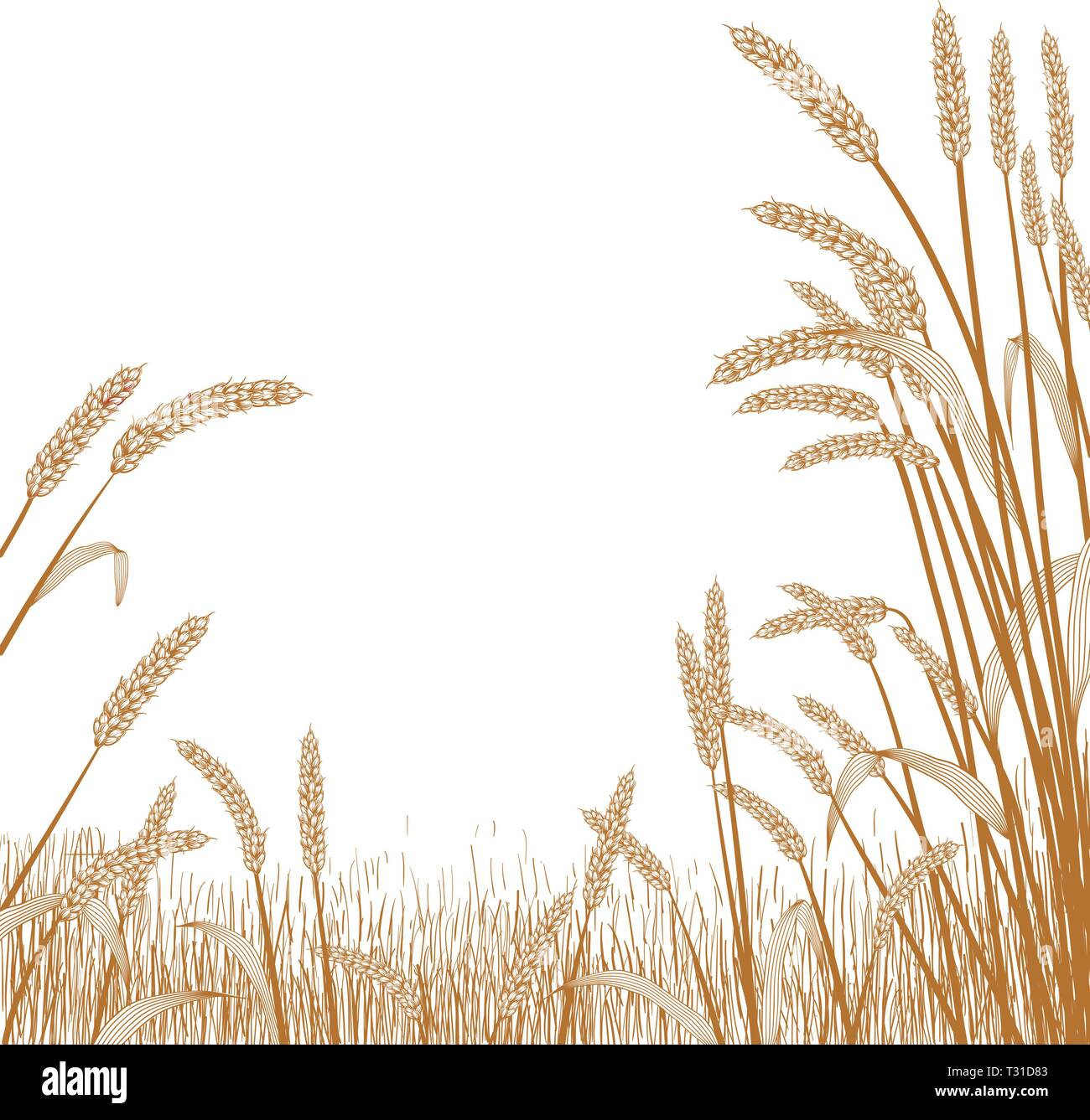 View of across a wheat field with wheat grass strands framing the scene in the foreground - Stock Vector