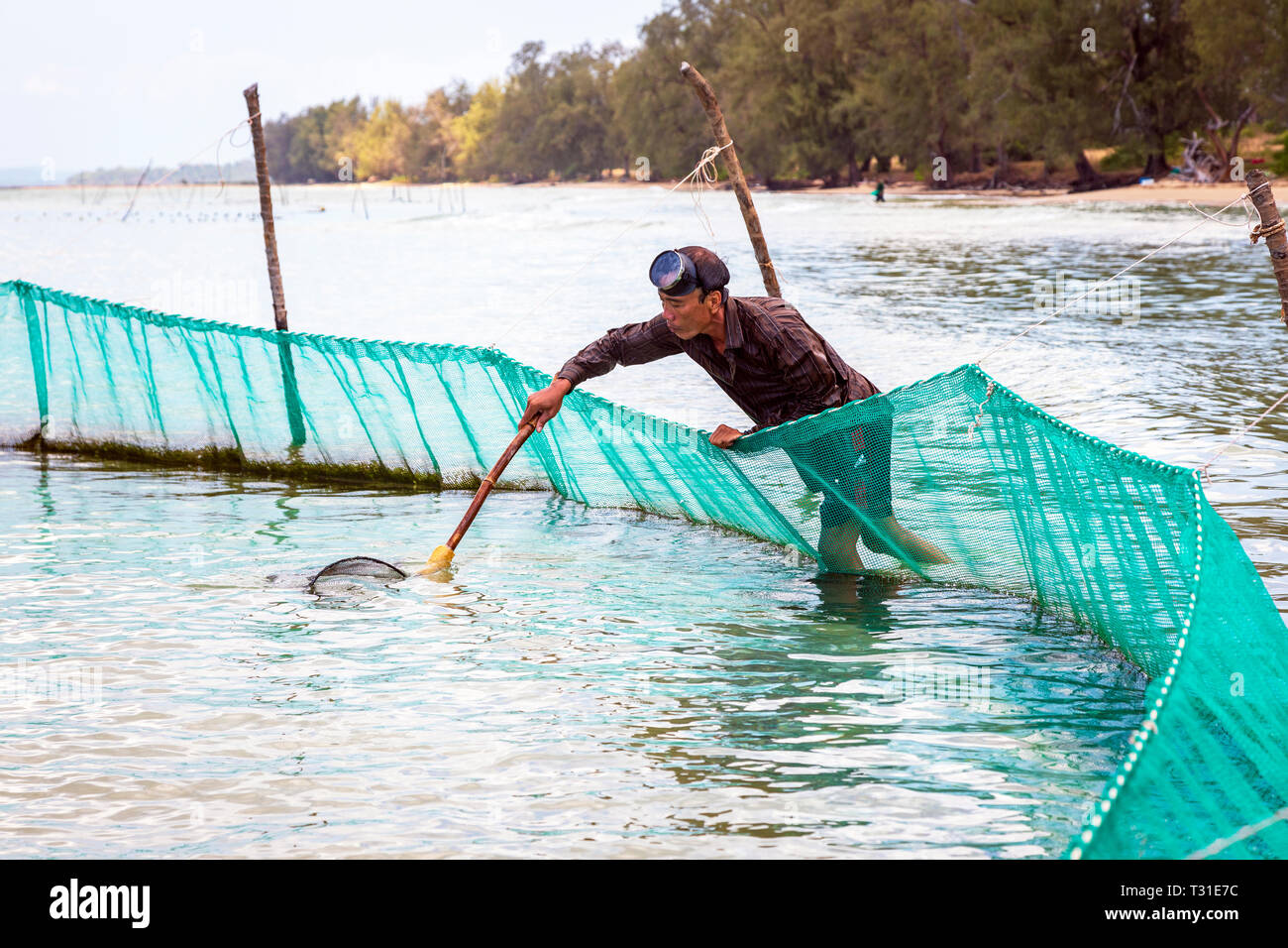 Local Vietnamese fisherman using a hand net and fishing nets off shore at Bai Dai Tay beach in the Gulf of Thailand, Phu Quoc Island, Vietnam, Asia. Stock Photo