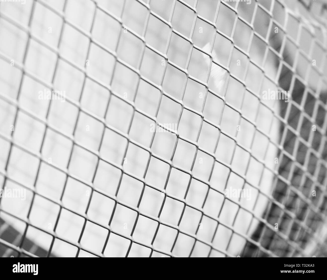 Protective grille for outdoor fan close-up - Stock Image