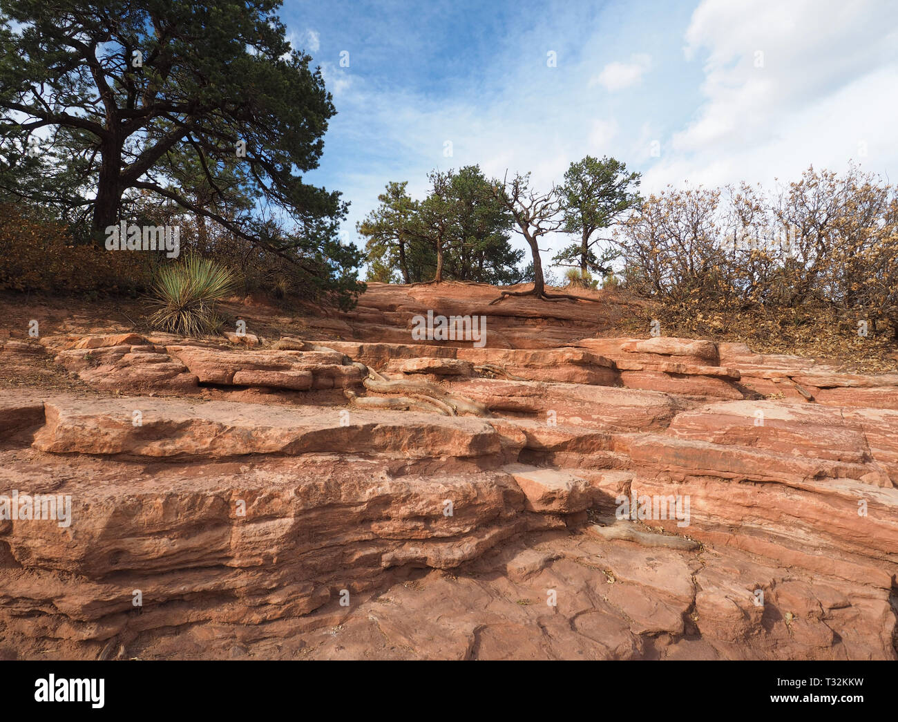 Red rock formations in the Garden of the Gods park in Colorado Springs, Colorado. - Stock Image