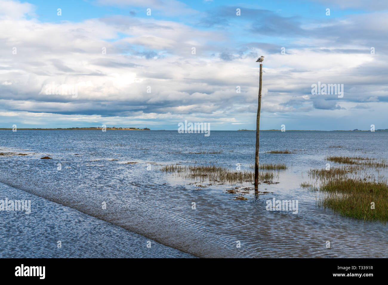 View from the flooded Road between Beal and the Holy Island of Lindisfarne in Northumberland, England, UK - Stock Image