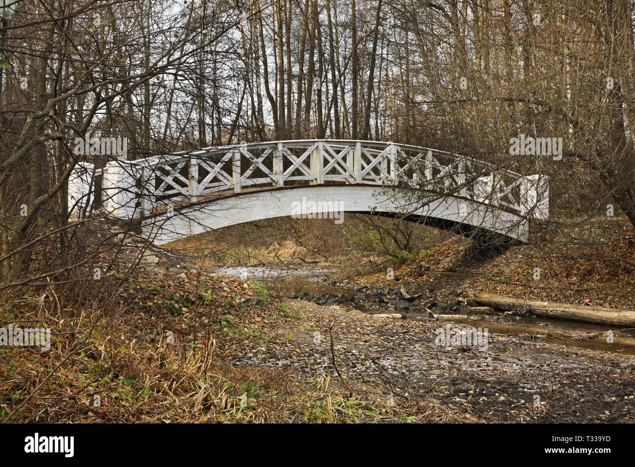 Humpback bridge in Ostafyevo park near Podolsk. Russia - Stock Image