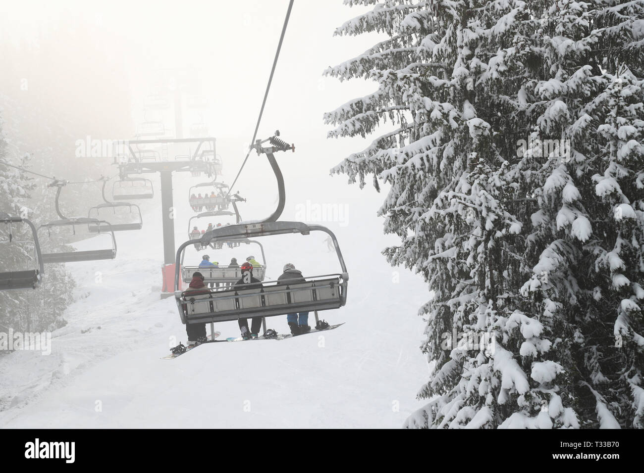 Sellnäs, Sweden 20190406 Skier in a wintry and foggy Romme alpine just outside Borlänge during Saturday. Photo Jeppe Gustafsson - Stock Image