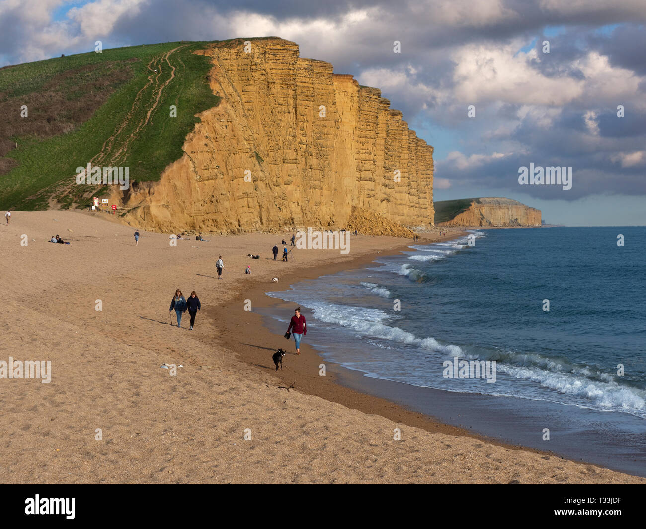 Westbay on the Jurassic Coast  in Dorset southern England - Stock Image
