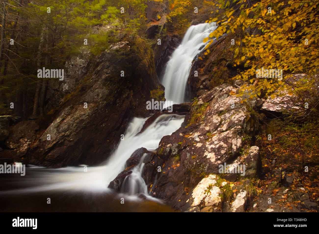 Waterfall in Summer - Stock Image