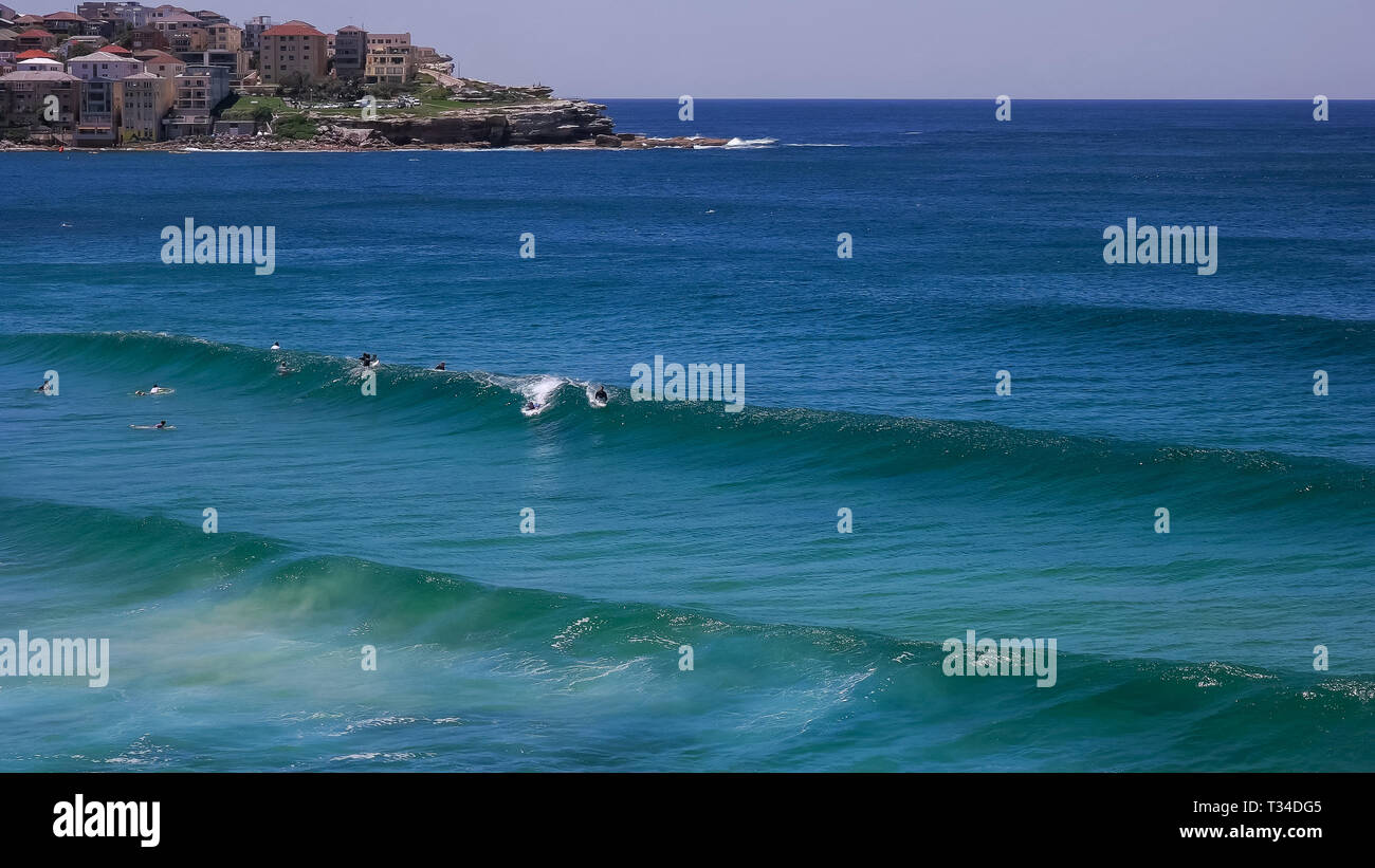 bodyboard surfer at bondi beach in sydney, australia - Stock Image