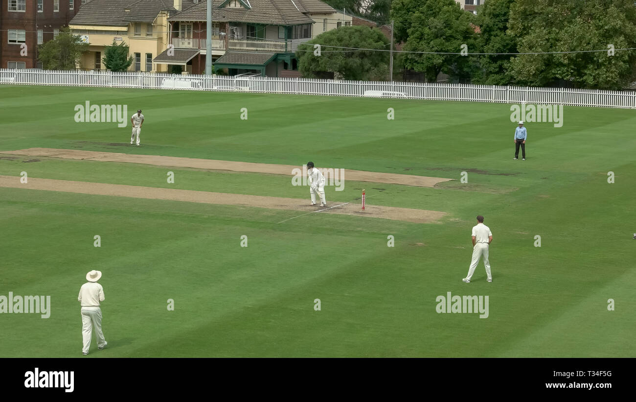 SYDNEY, AUSTRALIA - JANUARY 31, 2016: sydney grade cricket match Stock Photo