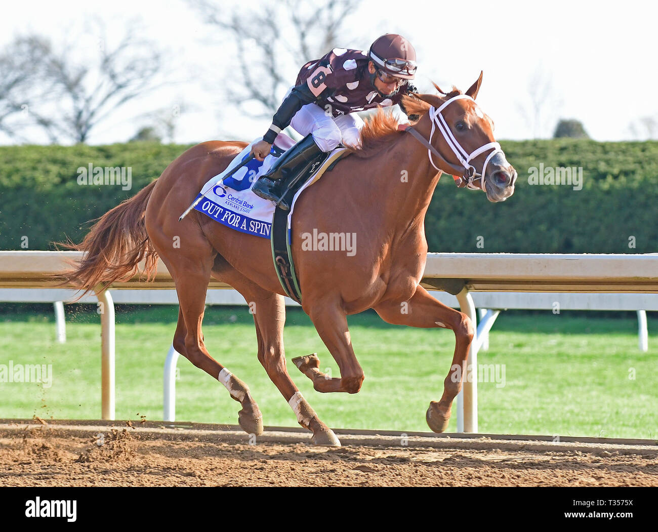 Lexington, Ky, KY, USA. 6th Apr, 2019. April 6, 2019 : Out for a Spin, trained by George Weaver, wins the 52nd Running of The Central Bank Ashland (G1) at Keeneland on April 6, 2019 in Lexington, KY. Jessica Morgan/ESW/CSM/Alamy Live News - Stock Image