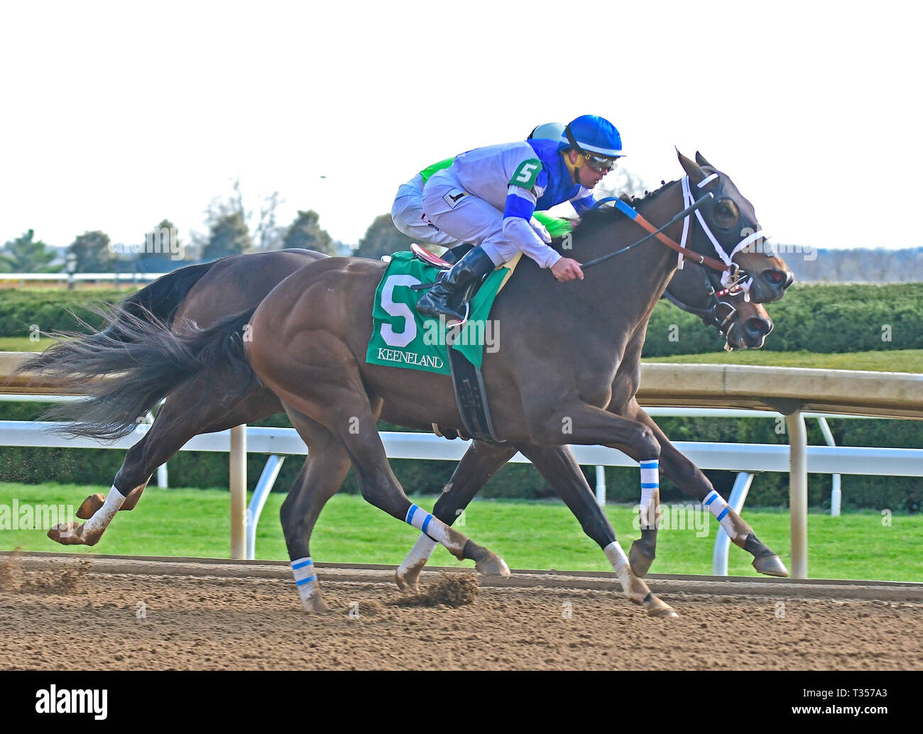 Lexington, Ky, KY, USA. 6th Apr, 2019. April 6, 2019 : Spiced Perfection, trained by Peter Miller, wins the 18th Running of The Madison (G1) at Keeneland on April 6, 2019 in Lexington, KY. Jessica Morgan/ESW/CSM/Alamy Live News - Stock Image