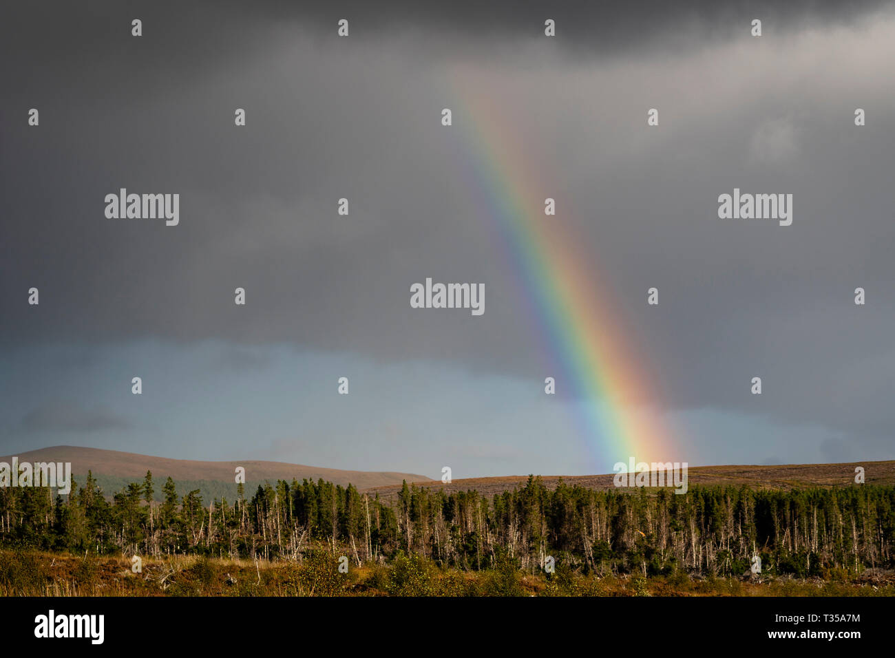 A vivid rainbow in northern Scotland. - Stock Image