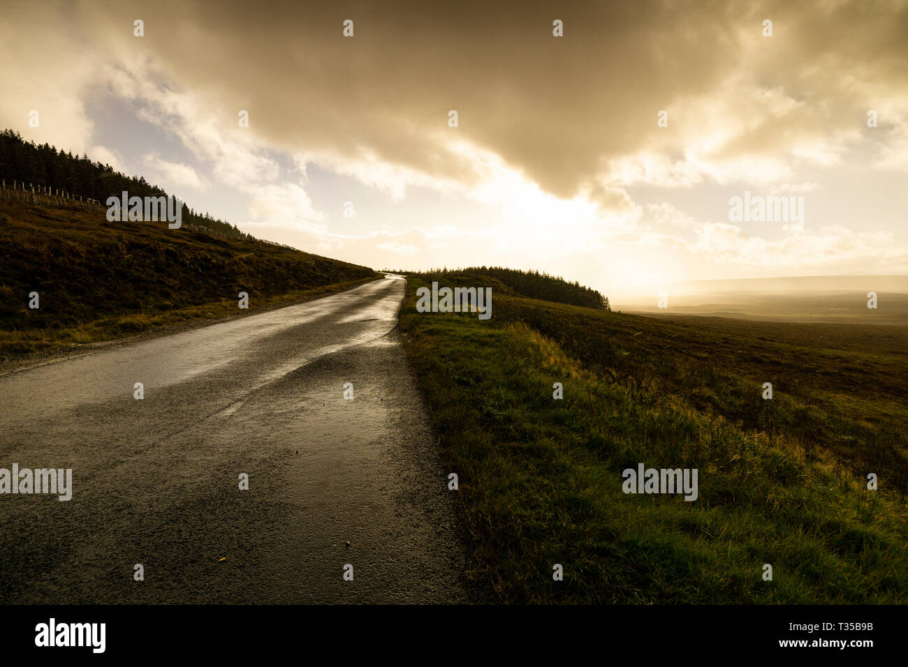 Rain drops, back-lit by the sun, fall on a rain-slicked road in northern Scotland. Stock Photo