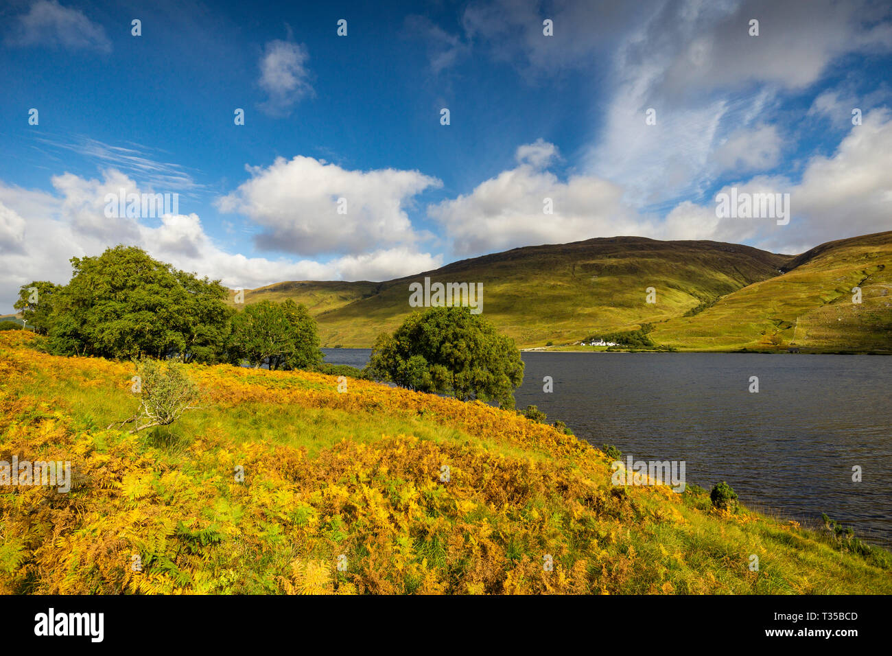 Autumn view taken on the shore of Loch More in Lairg in the Scottish Highlands. - Stock Image