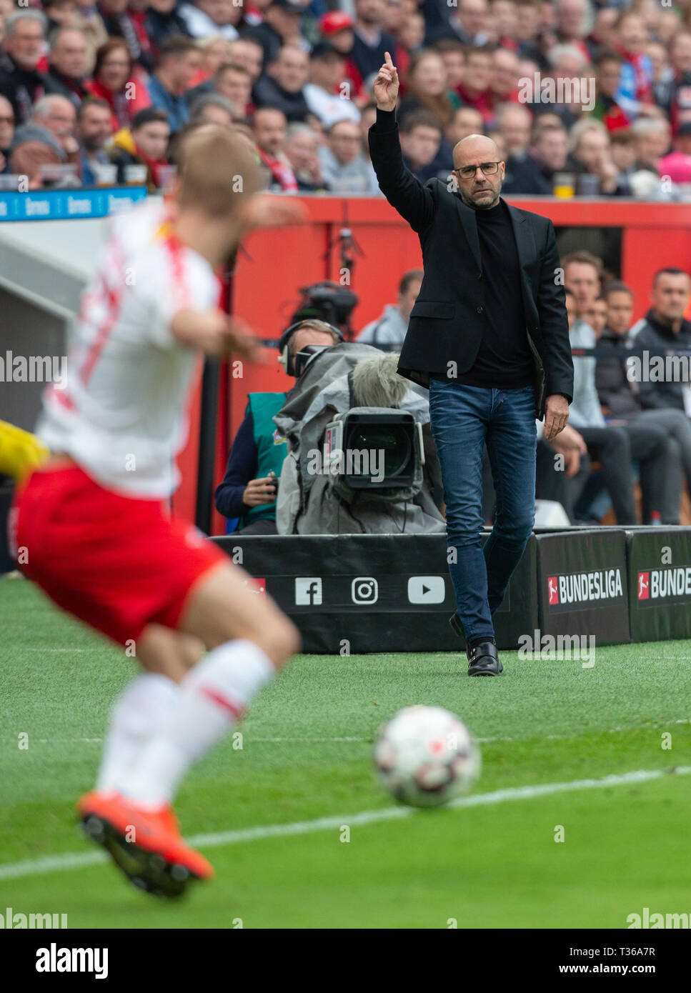 Leverkusen, Germany, April 6 2019, Bundesliga, Bayer 04 Leverkusen vs RB Leipzig: Manager Peter Bosz (B04) gestures.                  Credit: Juergen  - Stock Image