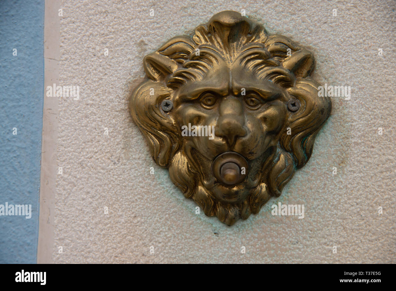 Door bell with a lion's head, antiqued burnished brass button. Electrified doorbell button of a house in Burano, Venice. - Stock Image