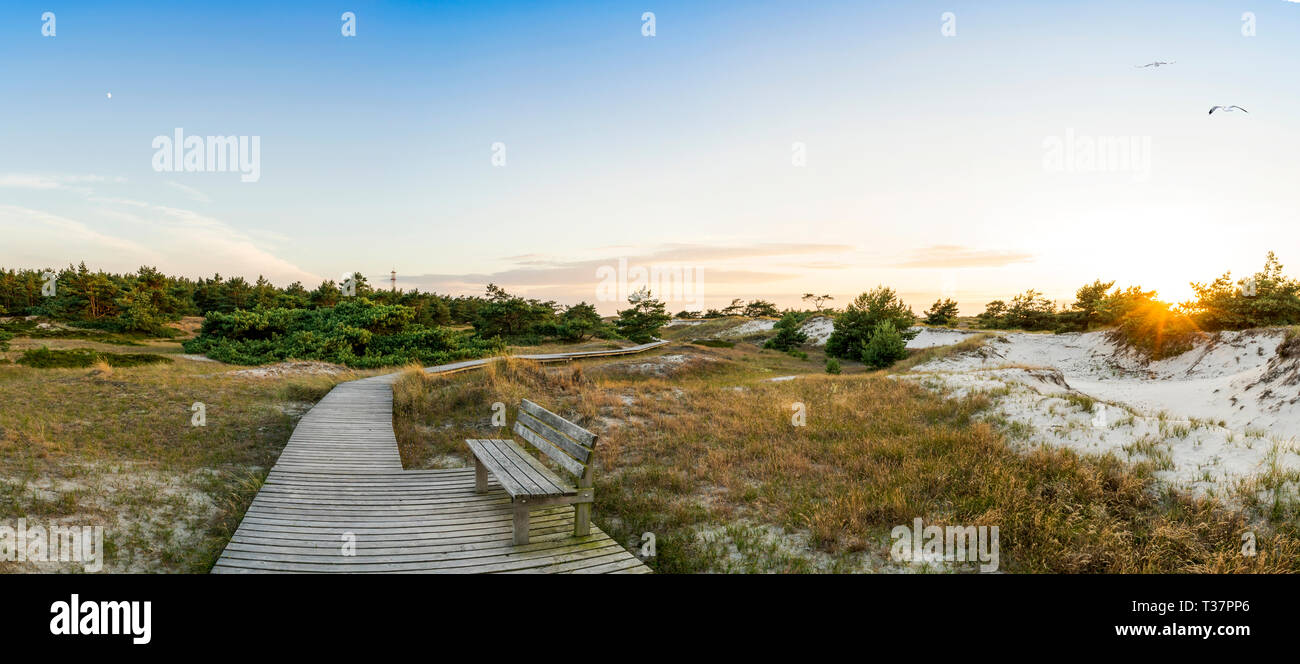 National Park in Prerow, the core zone of a protected area. - Stock Image