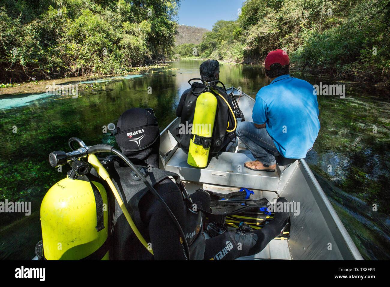 Diving in Sucuri River, Pantanal, Mato Grosso do Sul, Brazil - Stock Image
