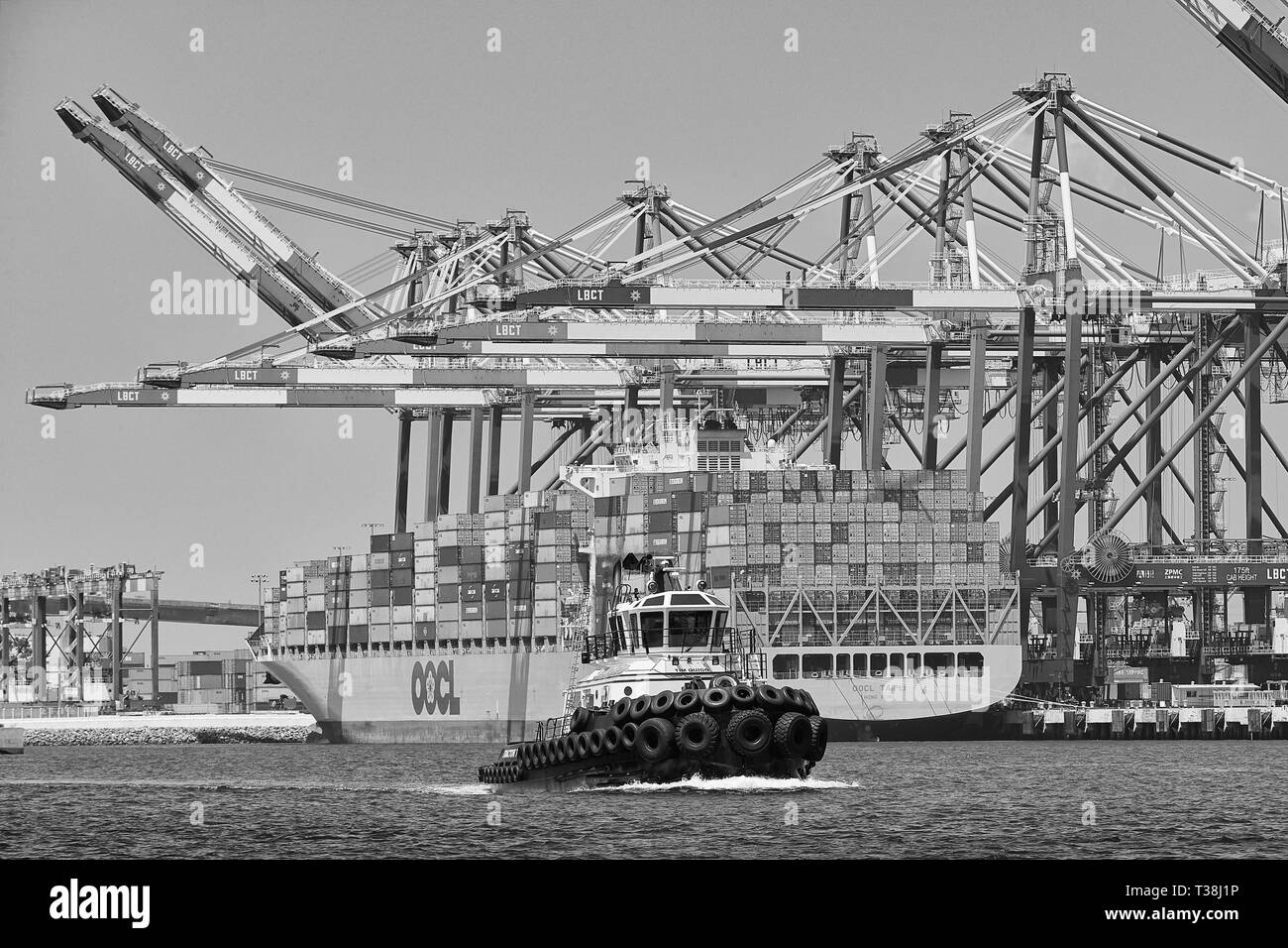 Millennium Maritime Tractor Tug, TIM QUIGG Passes The Container Ship, OOCL TAIPAI, Unloading In The Long Beach Container Terminal, California. USA. - Stock Image