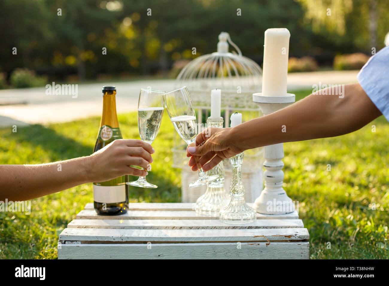 Women cheers glasses with champagne on sunny green park. Toast and clinking with alcoholic drinks. Celebration on wedding party. Marriage concept. - Stock Image