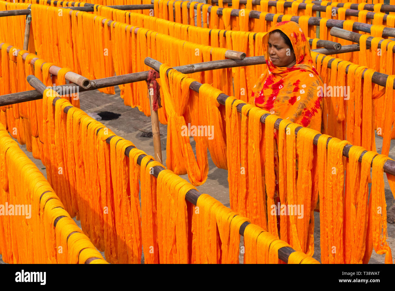Drying dyed yarn in the traditional weaving village, Tangail district, Dhaka Division, Bangladesh - Stock Image