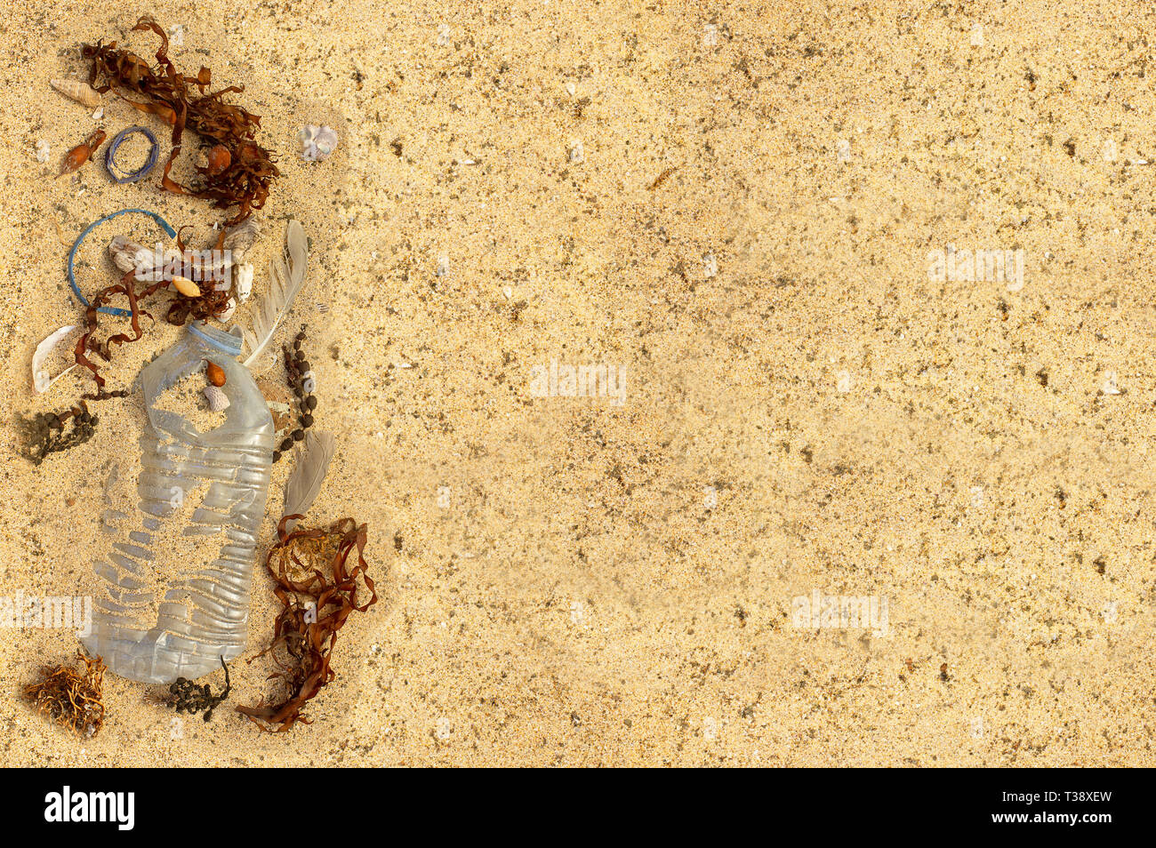 Real plastic bottle, with cap and plastic straw washed up on beach mixed with seaweed shells and feathers. Room for text - Stock Image