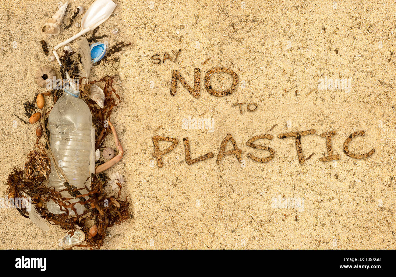 Real plastic bottle, with cap and plastic straw washed up on beach mixed with seaweed shells and feathers. Say no to plastic text - Stock Image