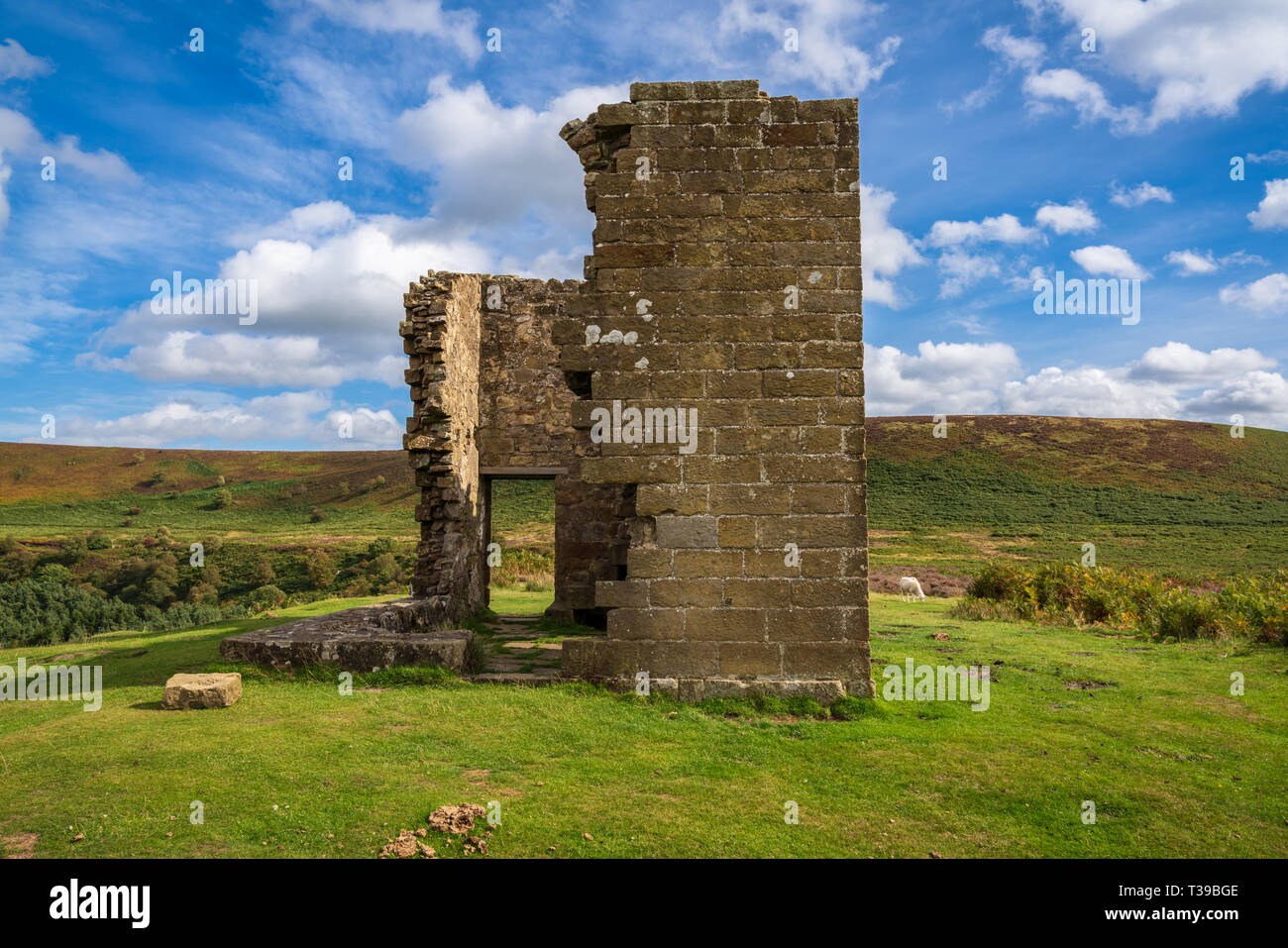North York Moors landscape, looking at Skelton Tower, seen from the Levisham Moor, North Yorkshire, England, UK - Stock Image